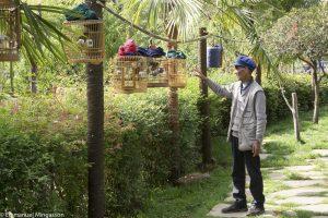 chine_lijiang_oiseau_cage