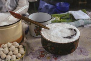 kazakhstan_almaty_lait_chamelle_tchal