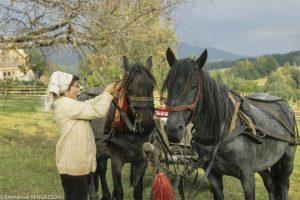 roumanie_alpage_cheval