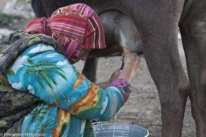 tadjikistan_saritag_aylok_alpage_femme_traite