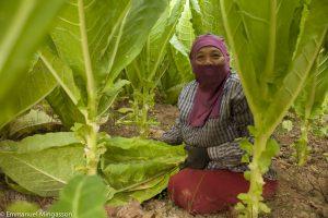 thailande_femme_tabac