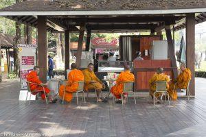 thailande_ferme_chochkai