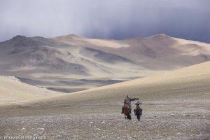 mongolie_lait_cavalier